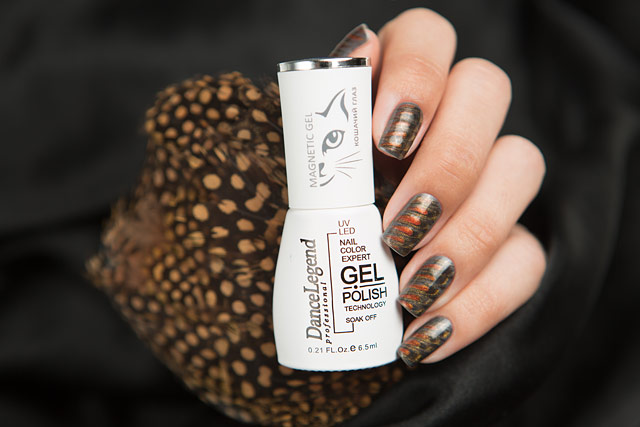 Dance Legend | Gel Polish | Magnetic Gel collection