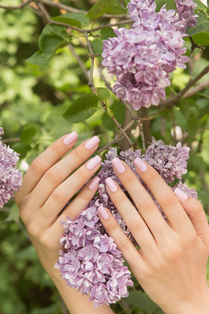 LE125 United Carnations | Dance Legend Gel Polish Pinky collection