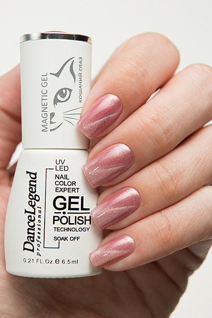 LE163 As a Jaybird | Dance Legend Gel Polish Gel Magnetic Nude collection